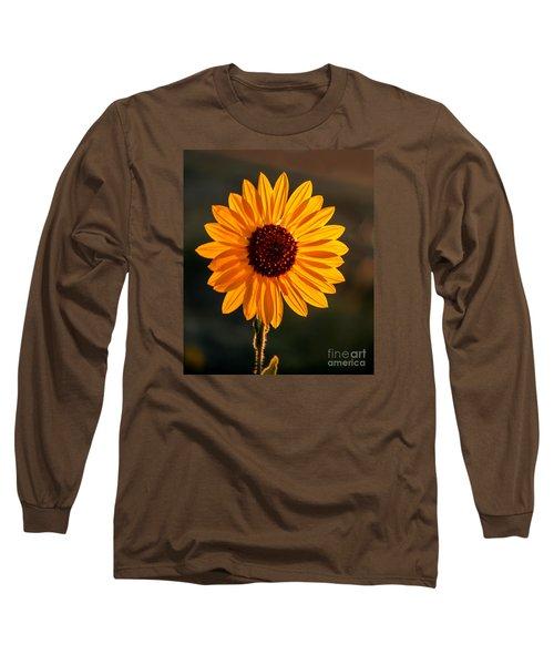 Beautiful Sunflower Long Sleeve T-Shirt by Robert Bales