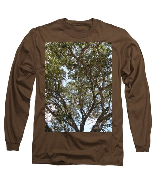 Big Oak Tree Long Sleeve T-Shirt