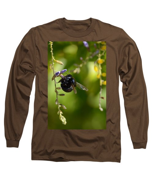 Black Bumblebee Long Sleeve T-Shirt by Debra Martz