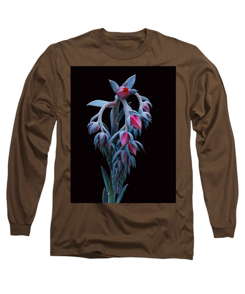 Blue And Pink Succulent Long Sleeve T-Shirt