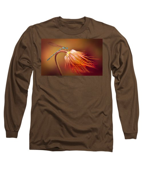 Blue Dragonfly On A Dry Flower Long Sleeve T-Shirt