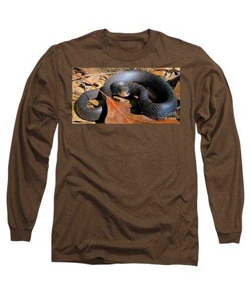 Blue Racer Long Sleeve T-Shirt