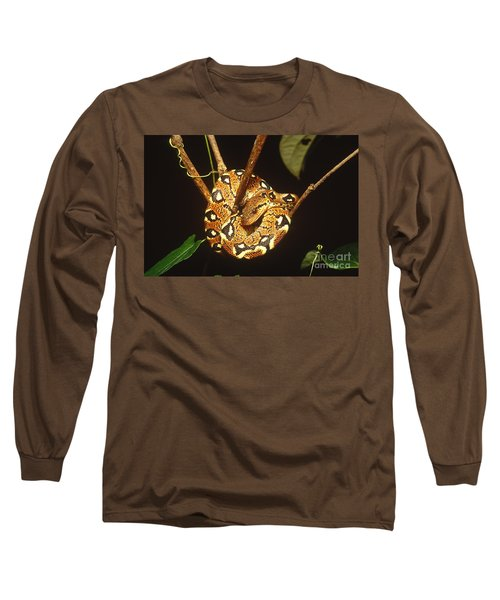 Boa Constrictor Long Sleeve T-Shirt by Art Wolfe
