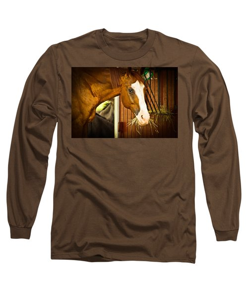 Brown Horse Long Sleeve T-Shirt by Joann Copeland-Paul