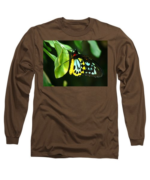 Butterfly On Leaf Long Sleeve T-Shirt by Laurel Powell