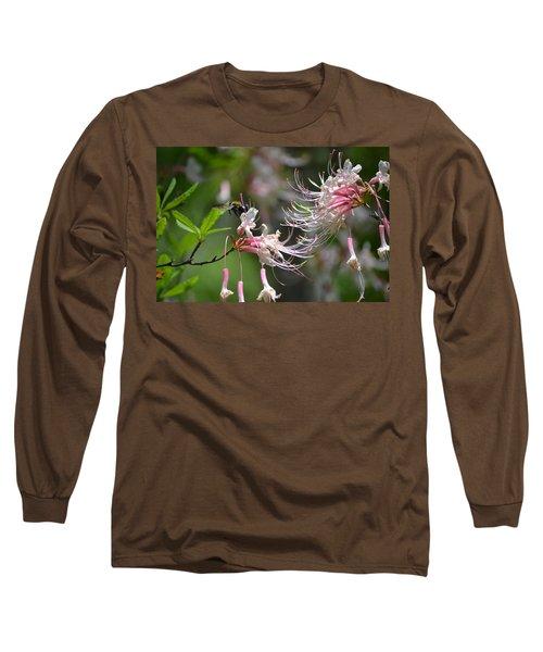 Long Sleeve T-Shirt featuring the photograph Buzz Buzz by Tara Potts