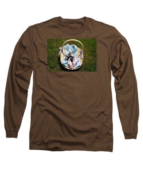 Calicos Pups At Two Days Long Sleeve T-Shirt
