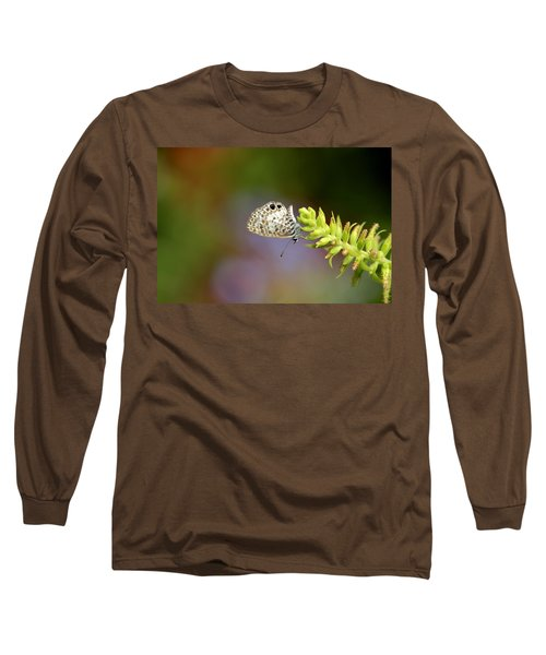 Cassius Blue Long Sleeve T-Shirt by Greg Allore
