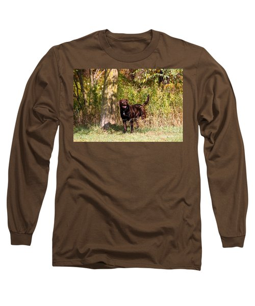 Chocolate Lab Cuteness Long Sleeve T-Shirt