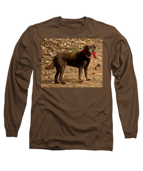 Long Sleeve T-Shirt featuring the photograph Chocolate Lab by Robert L Jackson