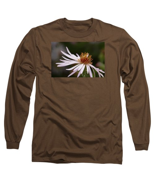 Long Sleeve T-Shirt featuring the photograph Climbing Aster by Paul Rebmann