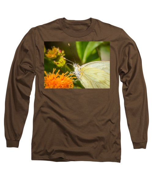 Butterfly Attracted To Mexican Flame Long Sleeve T-Shirt by Debra Martz
