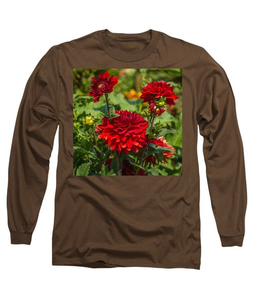 Cluster Of Dahlias Long Sleeve T-Shirt