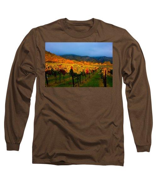 Colibri Morning Long Sleeve T-Shirt
