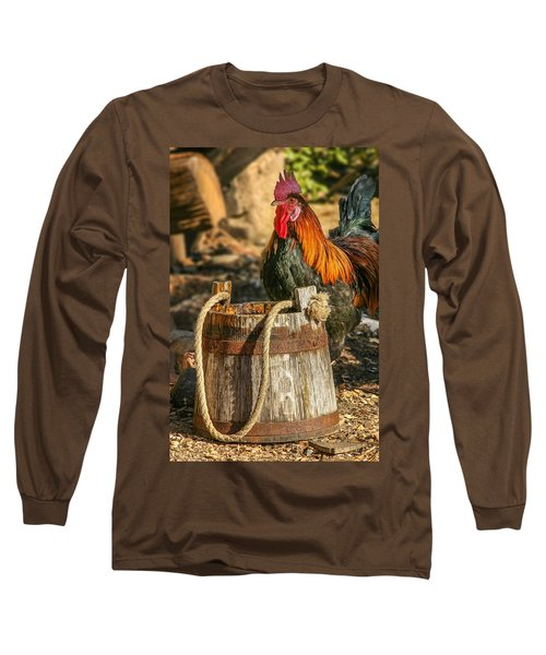 Coloful Rooster 2 Long Sleeve T-Shirt by Mary Almond