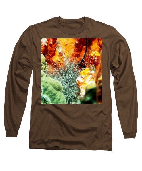 Corkscrew Anemone Grove Long Sleeve T-Shirt by Amy McDaniel