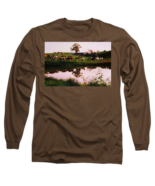 Cows In The Canal Long Sleeve T-Shirt by Martin Howard