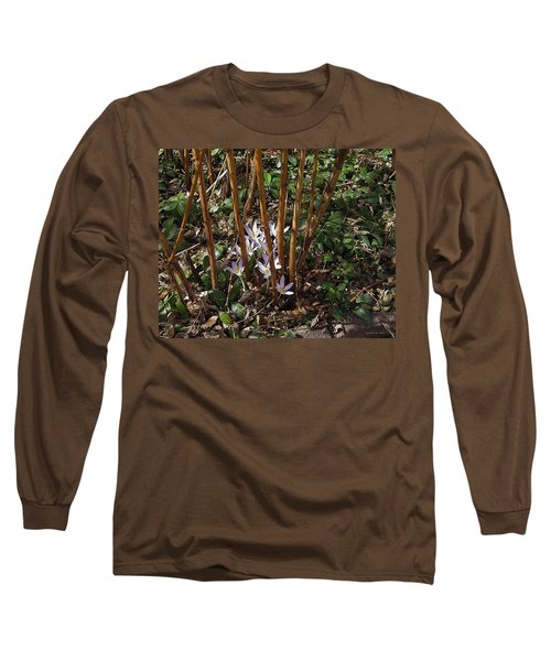 Long Sleeve T-Shirt featuring the photograph Crocuses And Raspberry Canes by Donald S Hall