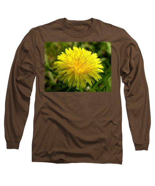 Dandelion Long Sleeve T-Shirt by Ron Harpham