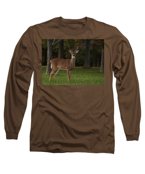 Long Sleeve T-Shirt featuring the photograph Deer In Headlight Look by Tammy Espino