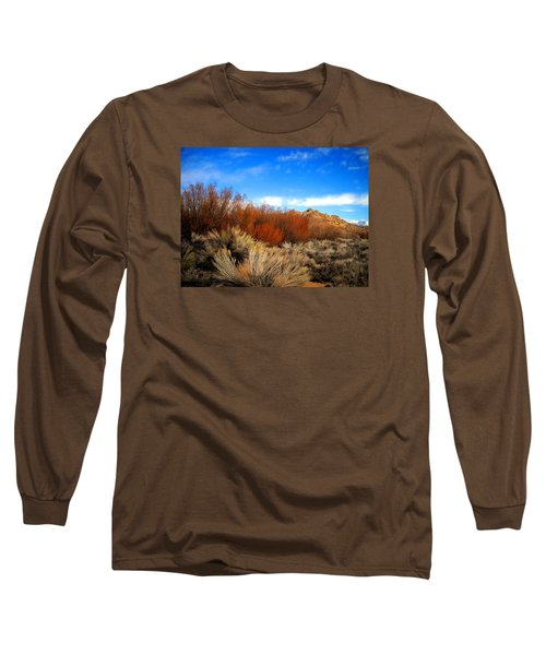 Long Sleeve T-Shirt featuring the photograph Desert Colors by Marilyn Diaz