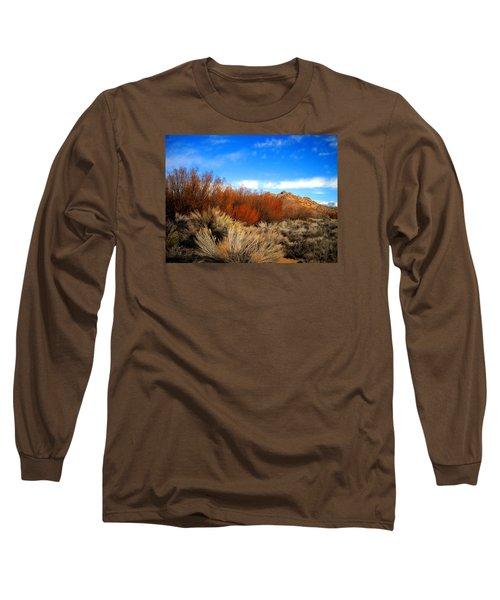 Desert Colors Long Sleeve T-Shirt by Marilyn Diaz