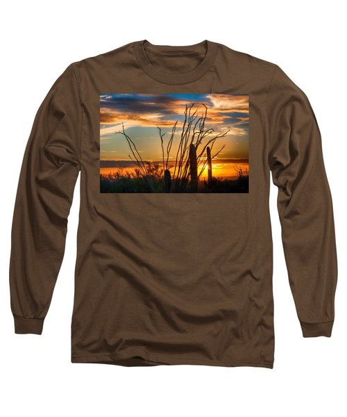 Desert Sunset Long Sleeve T-Shirt by Fred Larson
