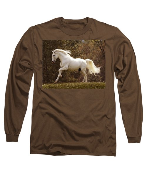 Dream Horse Long Sleeve T-Shirt