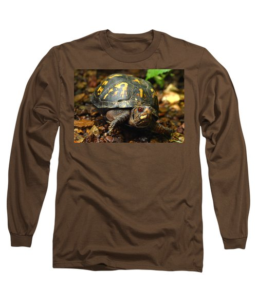 Eastern Box Turtle Long Sleeve T-Shirt