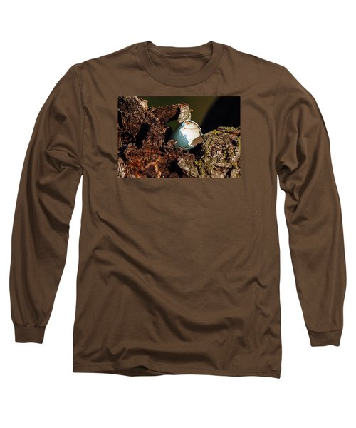 Eggs Of Nature 1 Long Sleeve T-Shirt by David Lester
