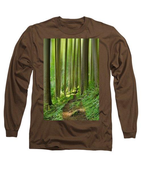 Enchantment Long Sleeve T-Shirt by Don Schwartz
