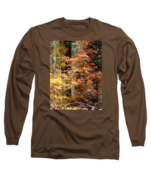 Fall Colors 6412 Long Sleeve T-Shirt by En-Chuen Soo
