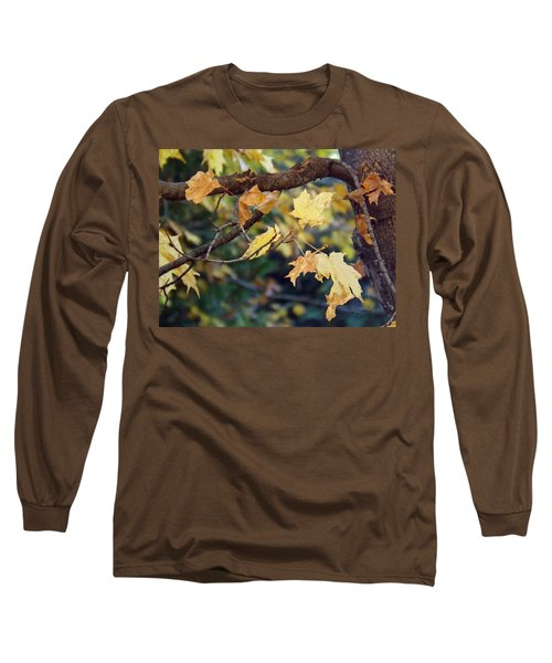 Fall Foilage Long Sleeve T-Shirt