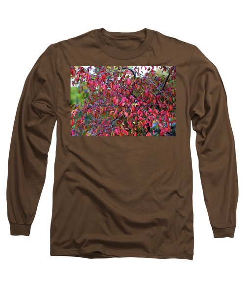 Fall Foliage Colors 05 Long Sleeve T-Shirt