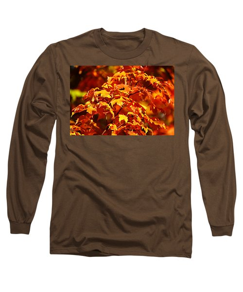 Fall Foliage Colors 14 Long Sleeve T-Shirt