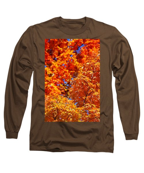 Fall Foliage Colors 17 Long Sleeve T-Shirt