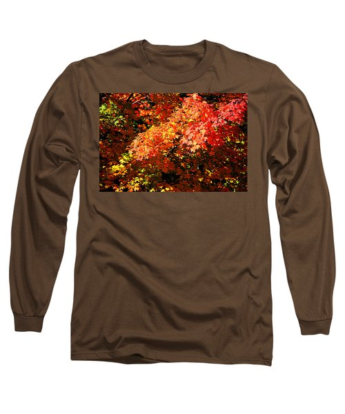Fall Foliage Colors 21 Long Sleeve T-Shirt