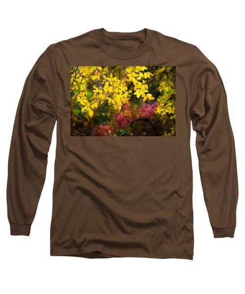 Fall Medley Long Sleeve T-Shirt