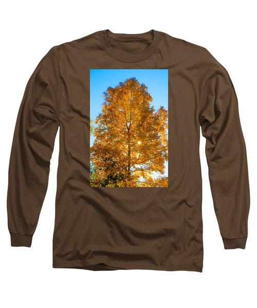 Fall Tree Long Sleeve T-Shirt