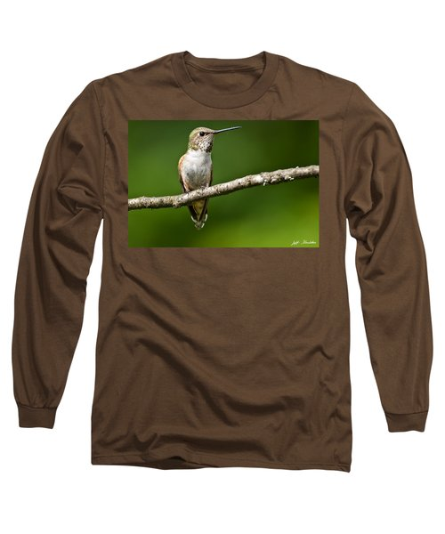 Female Rufous Hummingbird In A Tree Long Sleeve T-Shirt by Jeff Goulden