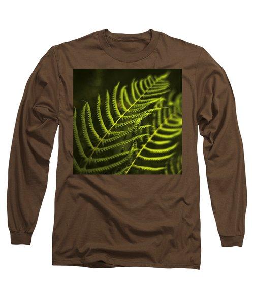Fern Long Sleeve T-Shirt by Bradley R Youngberg