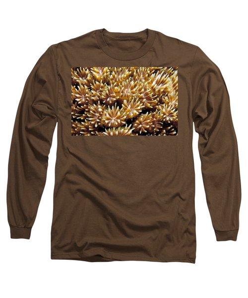 Fiji Soft Coral Long Sleeve T-Shirt