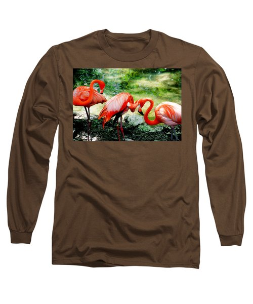 Flamingo Friends Long Sleeve T-Shirt