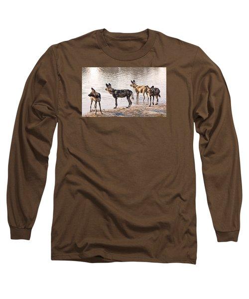 Long Sleeve T-Shirt featuring the photograph Four Alert African Wild Dogs by Liz Leyden