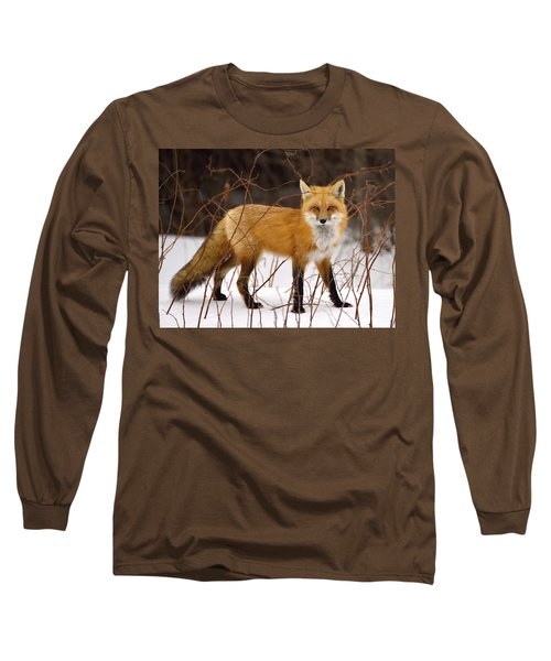 Fox In Winter Long Sleeve T-Shirt