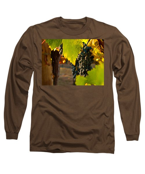 Fruit Of The Vine Long Sleeve T-Shirt by Bill Gallagher