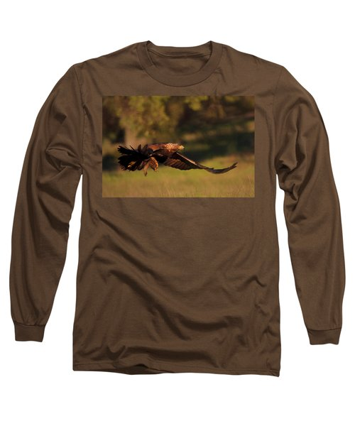 Golden Eagle On The Hunt Long Sleeve T-Shirt