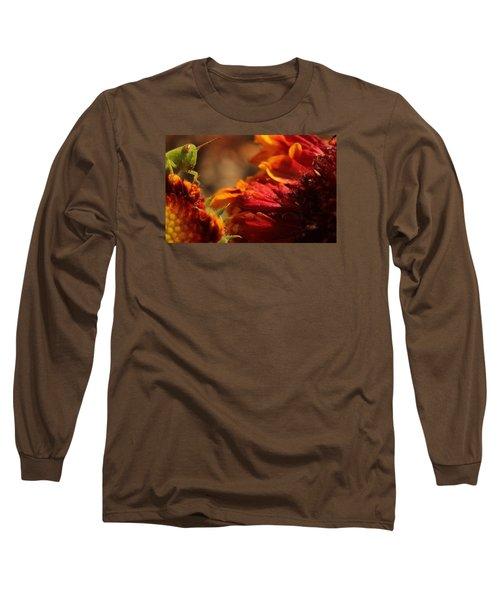 Grasshopper In The Marigolds Long Sleeve T-Shirt by Joel Loftus