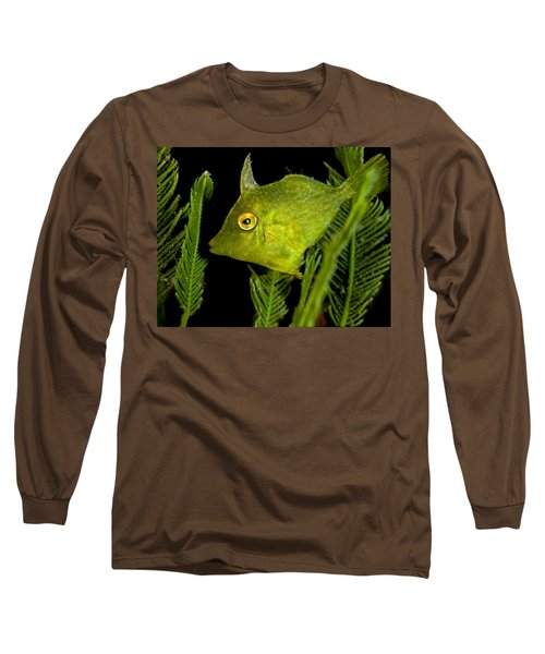 Green Beauty Long Sleeve T-Shirt