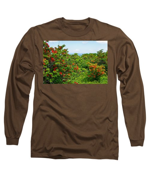 Gregory Bald Long Sleeve T-Shirt by Melinda Fawver
